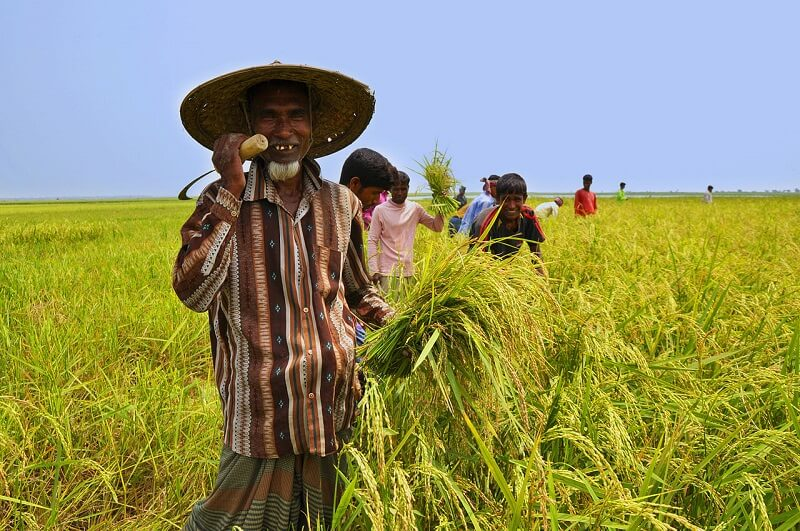 ekonomi pertanian desa 2 (1)