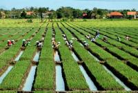 masalah pertanian di indonesia